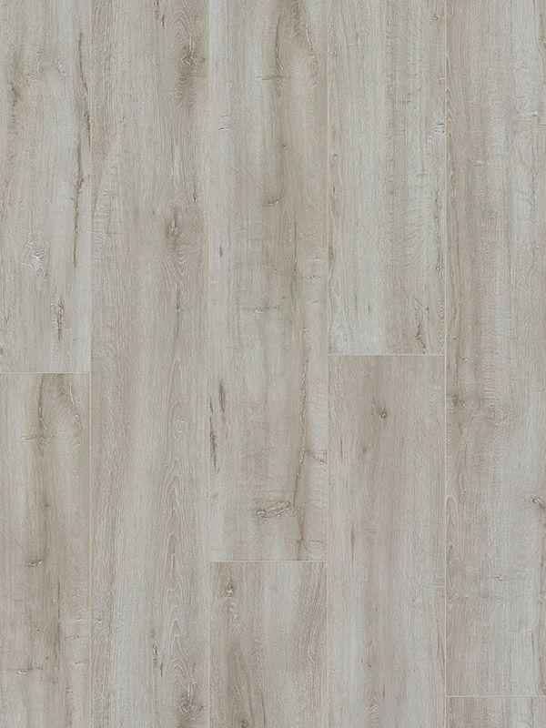Corsica Oak XXL